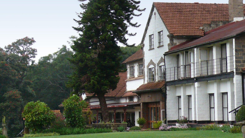 1365 x 768 jpeg 219kB, Tree Top HotelKenya,Tree TopView,TreeOutline ...