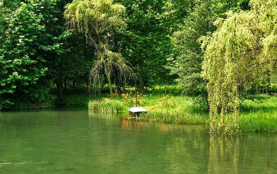 Brivio laghetto piccolo laghetto d 39 estate pieno di - Piscina calusco d adda ...