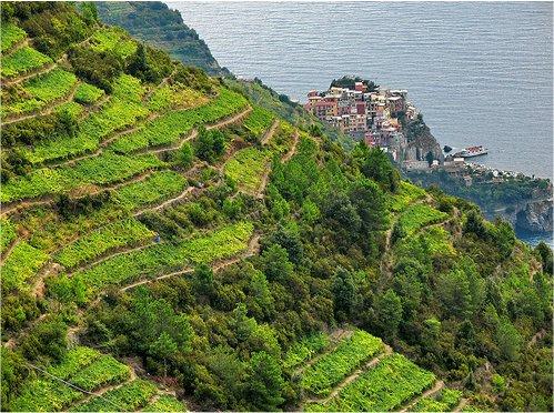 Cinque Terre: mappa dei sentieri da Monterosso a Vernazza, Manarola ...