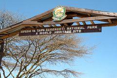 Serengeti: ingresso