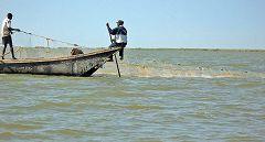 Lago Ciad: pescatori Kotoko