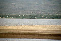 Lago Eyasi