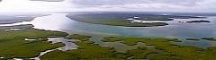 Rio Cacheu - le mangrovie