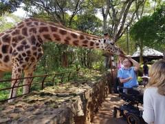 Giraffe Centre (Nairobi)