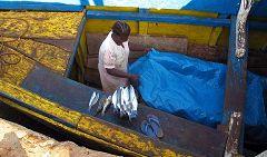 Bubaque: barca