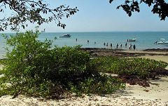 Isola di Orango: sbarco
