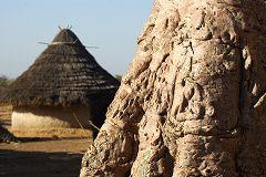 Manantali: baobab