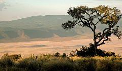Ngorongoro: vista da sud ovest