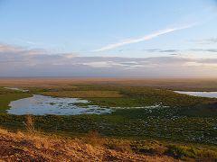Enkongu Narok Swamp (Amboseli)