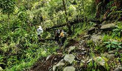 Parco nazionale dei Monti Rwenzori