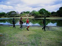Rufiji River swamplands