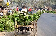 Alakdiar: banane