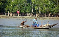 Sundarbans: pescatori