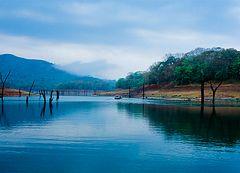 Lake Thekkady (Periyar)