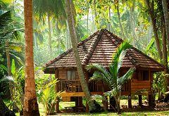Palm Paradise Cabanas (Tangalle)