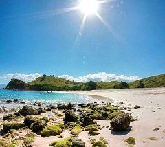 Pink Beach (Komodo)