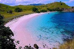 Pink Beach (Lombok)