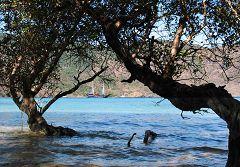Pulau Nusakode