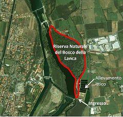 Bosco della Lanca: riserva naturale