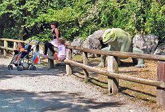 Rivolta: parco della preistoria