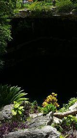Cenote Zaci (Valladolid)