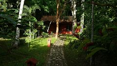 Tikal Jungle Lodge