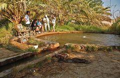 Una fonte di acqua calda e solforosa
