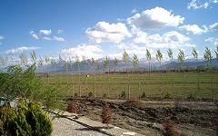 Erzincan: paesaggio