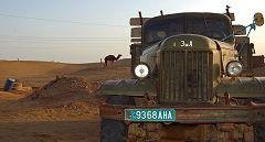 Karakum: cammello