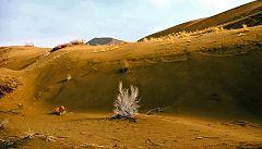 Maranjab: dune