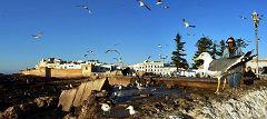 Essaouira: panorama