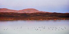 Merzouga: lago