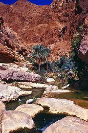 Canyon tra i monti Hajar