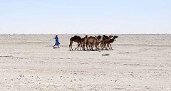 Nouakchott: deserto