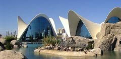 Valencia: parco oceanografico