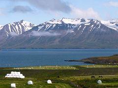 Eyjafjörður: fiordo