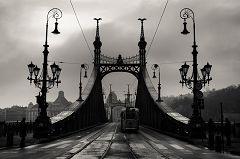 Szabadság híd (Ponte della Libertà)