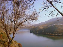 Regione vinicola dell'alto Douro