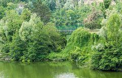 Baggero: oasi - laghetto sud