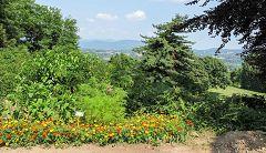 Pomelasca: giardino botanico