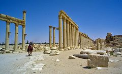 Palmira: colonne