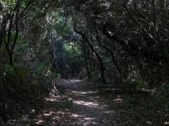 Sentiero per Akoli