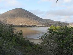 La laguna di Punta Cormorant (Floreana)
