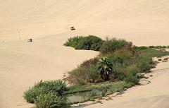 Ica: oasi e dune
