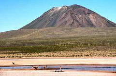 Pampa Cañahuas: vulcano Chachani