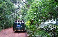 Puerto Macuco, lo sterrato nella giungla