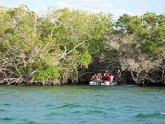 Punta Espinosa