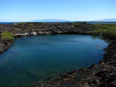 Punta Moreno (Isabela)