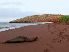 Rabida (Jervis Island)