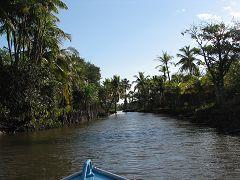 Il Rio Preguicas